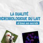 Qualité microbiologique du lait