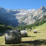 Balles de foin dans les Pyrénées